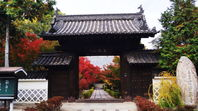 中区の国清寺の紅葉
